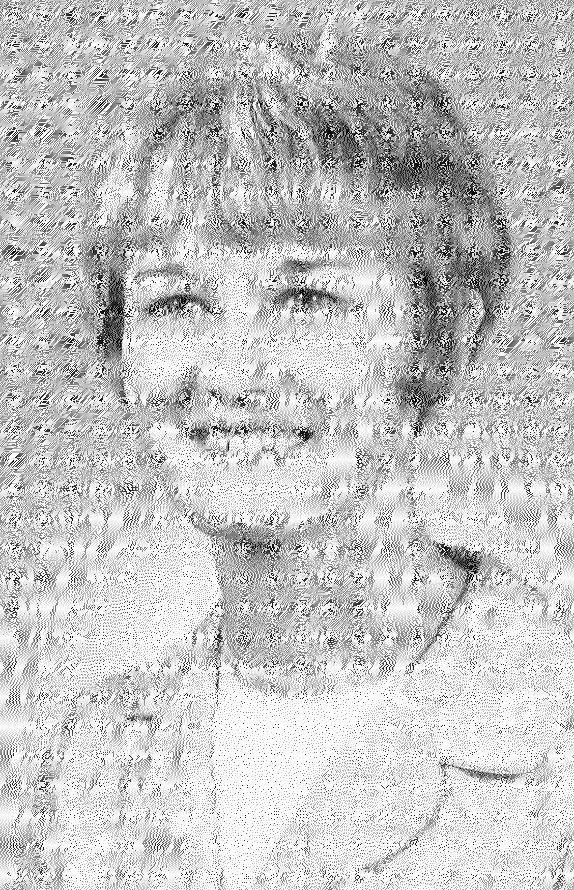 Weldon, Phyllis Ann